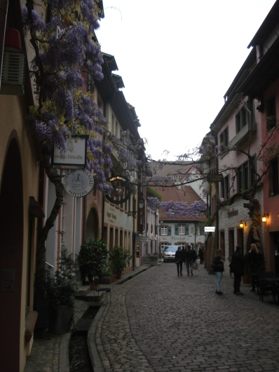 Blumenverzierte Konviktstrasse in Freiburger Altstadt