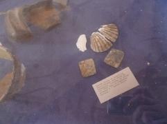 Eine gefundene Jakobsmuschel eines Pilgers aus dem Mittelalter (Foto: schrittWeise)