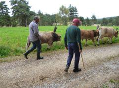Die beiden Bauern (Fotorechte: schrittWeise)