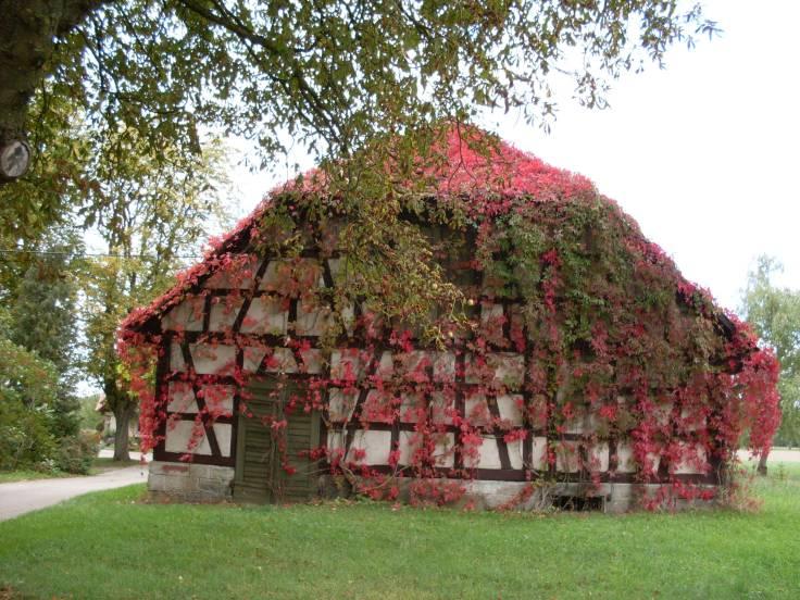 Ein Bauernhof in Schöngras Fotorechte: Dario schrittWeise)