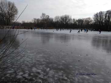 Eishockey liegt wieder hoch im Kurs (Fotorechte: Dario schrittWeise)