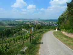 Der Abstieg nach Wurmlingen