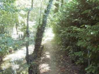 Am Fluss entlang (Foto mit Überbelichtung)