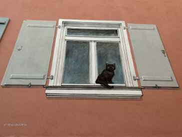 Katzengraffitti